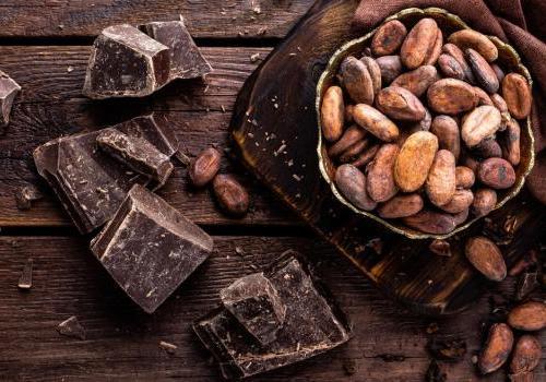 Chocolat de Bayonne